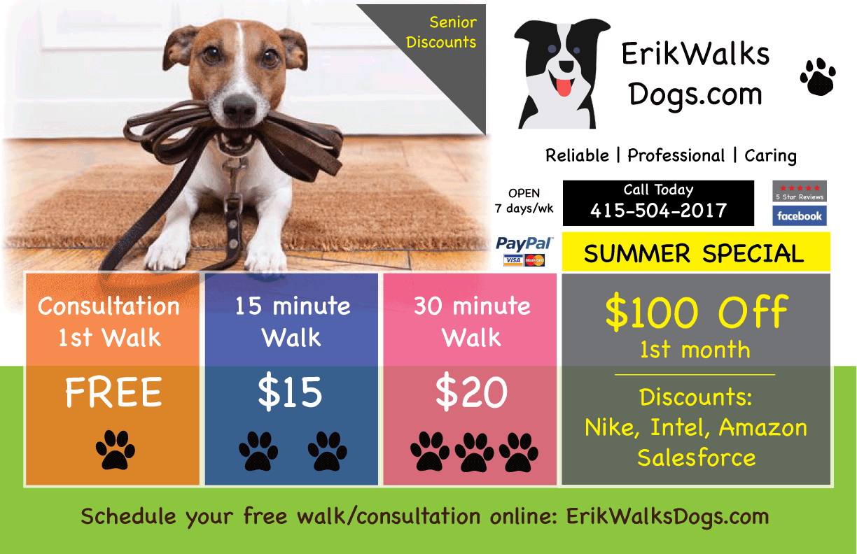 Erik Walks Dogs.com Promo Flyer @2x